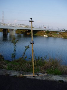 竹製グライドカム風スタビライザー